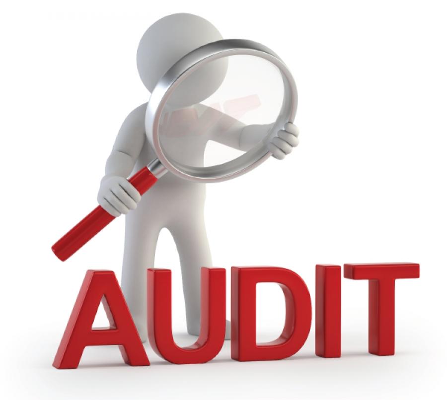 Les domaines d'audit
